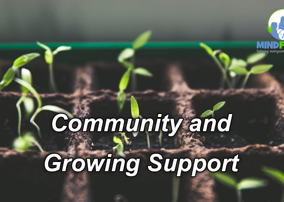 Community and Growing Support(w1200)
