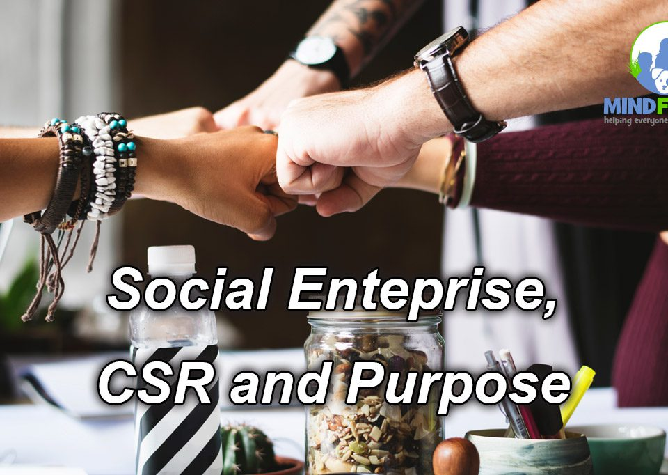 Social Enterprise, CSR and Purpose(w1200)