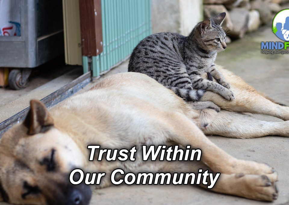 Trust Within Our Community