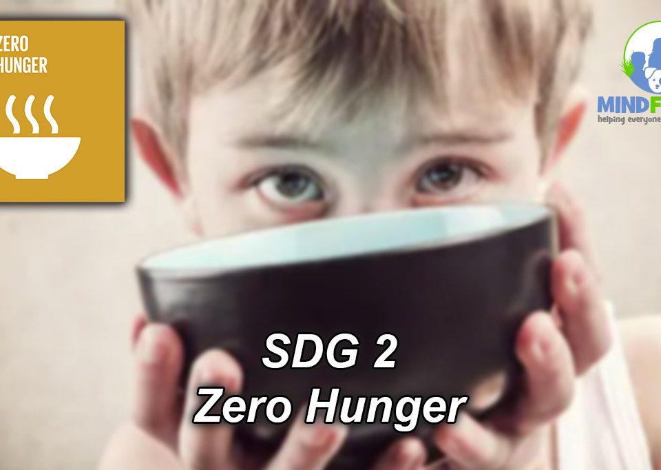 SDG2 Zero Hunger