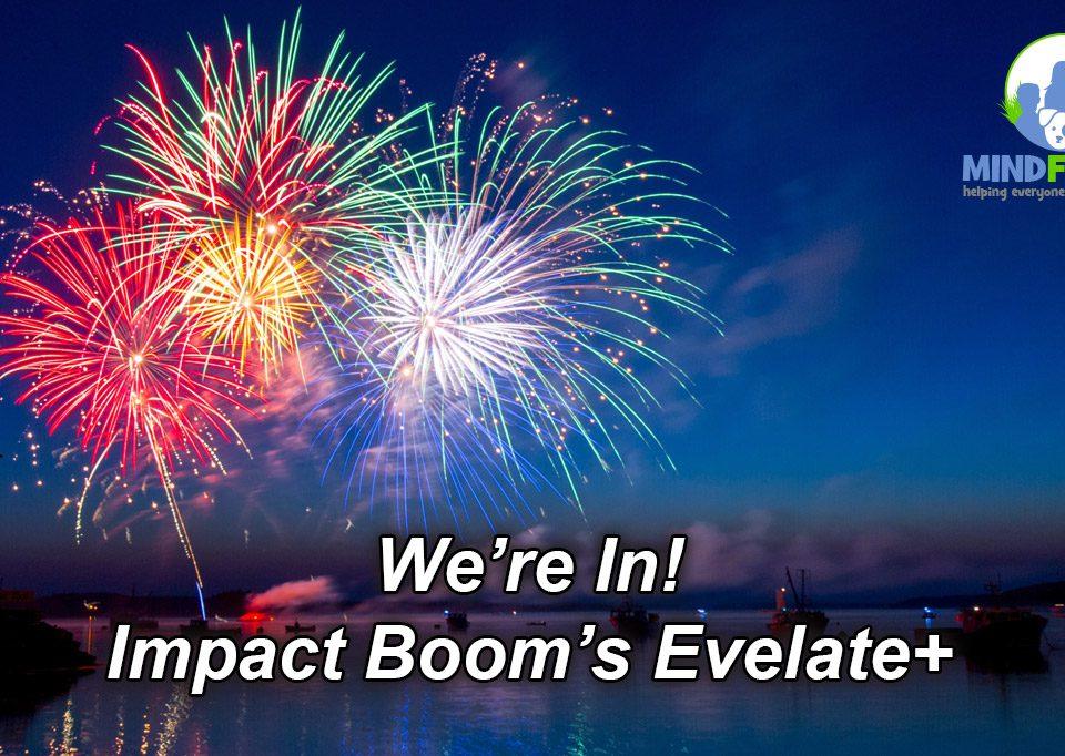 Impact Boom's Elevate+